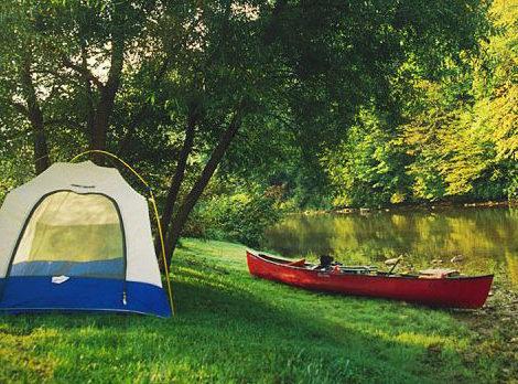 Perfect Picnic Getaways in NC