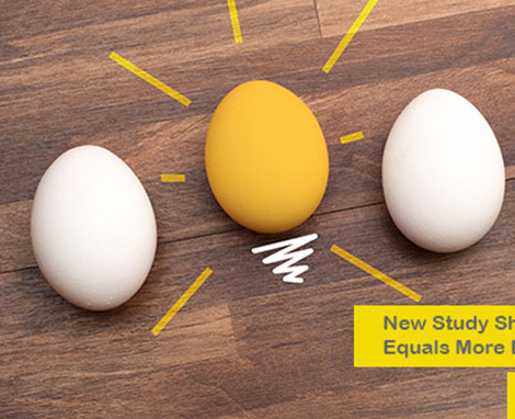 New Study shows that more eggs equals more brain power!