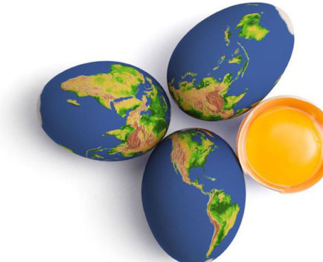 The 10 Egg Commandments – World Egg Day!