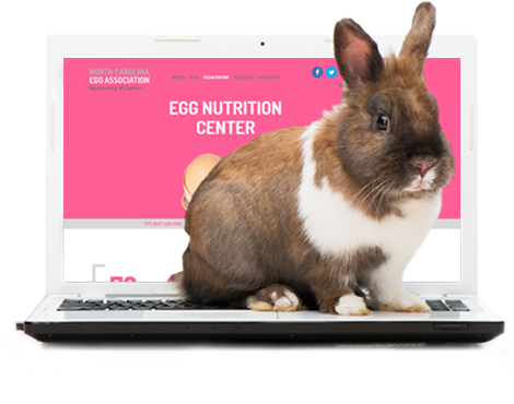 Somebunny Got a New Website!
