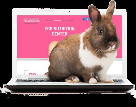Somebunny Got a New Website!