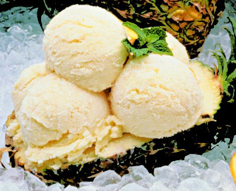 Vanilla Frozen Custard Ice Cream