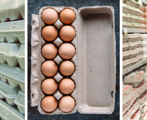 Unscramble Egg Carton Labels: What All Those Terms Really Mean