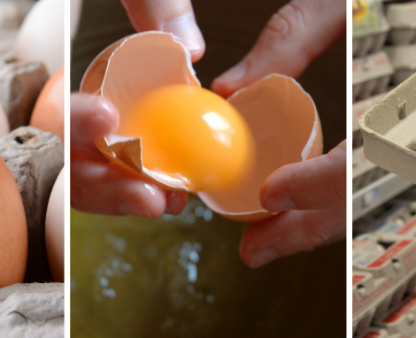 5 Egg Safety Tips You Should Know