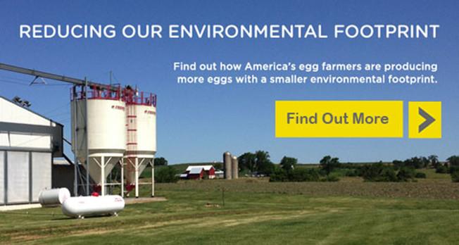 environmental-footprint-545x287